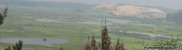 Humedal Laguna de La Herrera