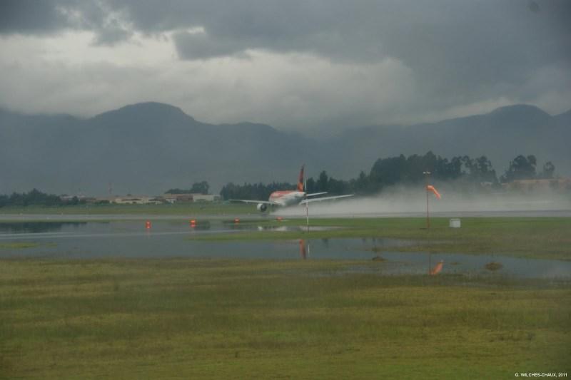 Humedales aeropuerto El Dorado, Bogotá